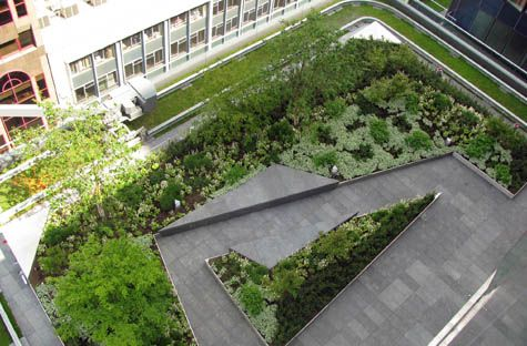 Raised beds with built-in benches on roof terrace