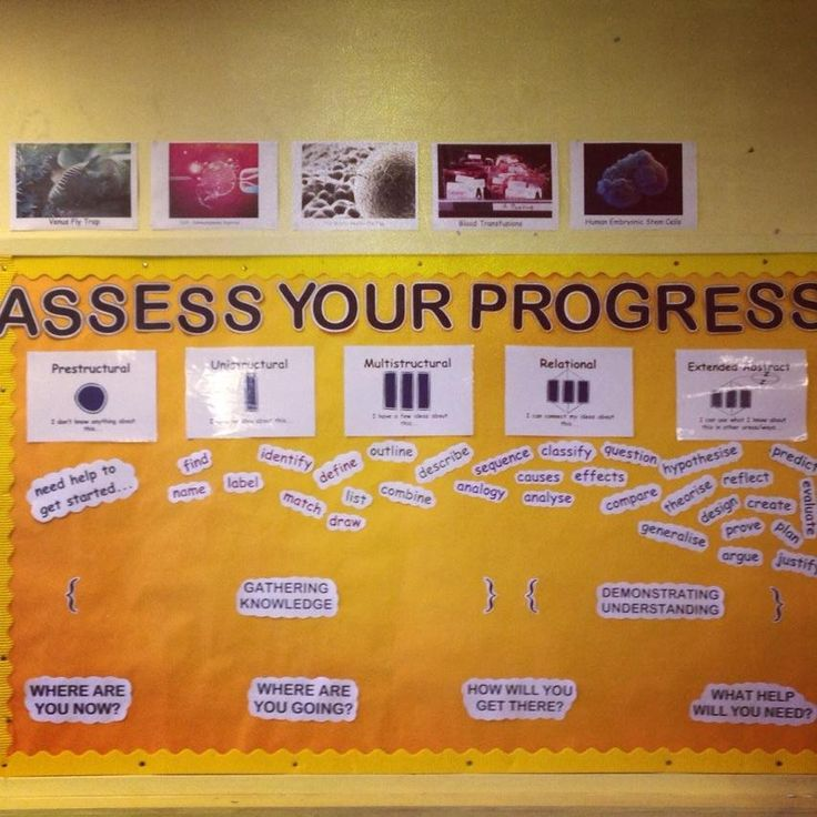 Miss Cunningham (@MsCunninghamBio) | Twitter   Assessment board slowly getting there :) #Pedagoofriday