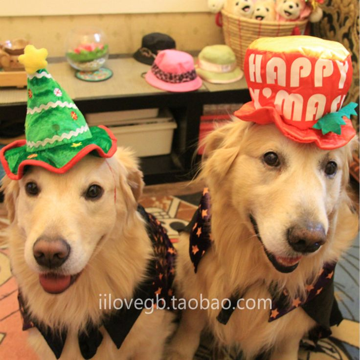 Large Dog Cosplay Cap Dog Birthday Party Hat Pet Christmas Hat Big Small Medium-sized Dog Christmas Costume Printed Fleece Hat