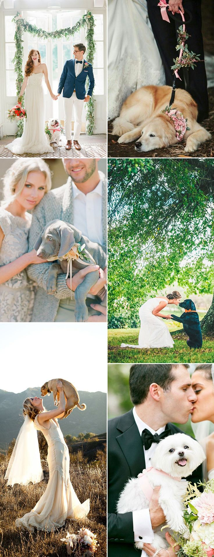 Include your beloved dog in your wedding day plans - GS Inspiration at Glitzy Secrets helps you with your plans