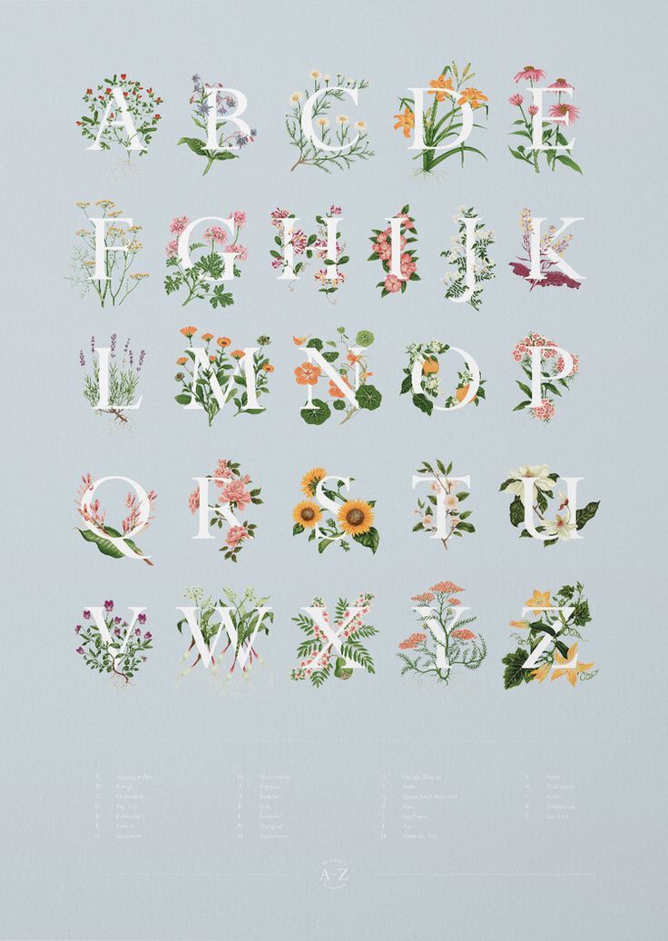 Charlotte Day's alphabet suite of Edible Flowers features elegant typography emblazoned with exquisitely detailed images of edible flowers, each composition rendered expertly in gouache.