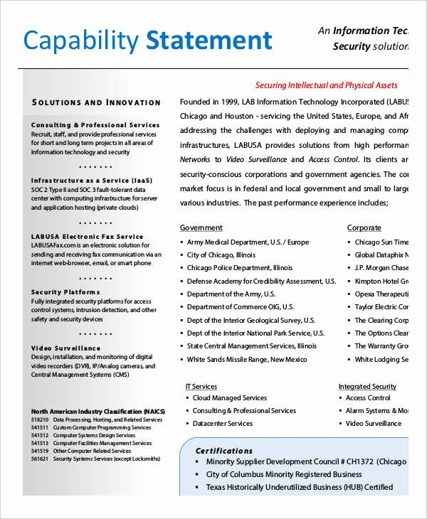 Capability Statement Template Doc Beautiful 12 Word Pdf Google Apple Pag Mission Words Personal Capacity