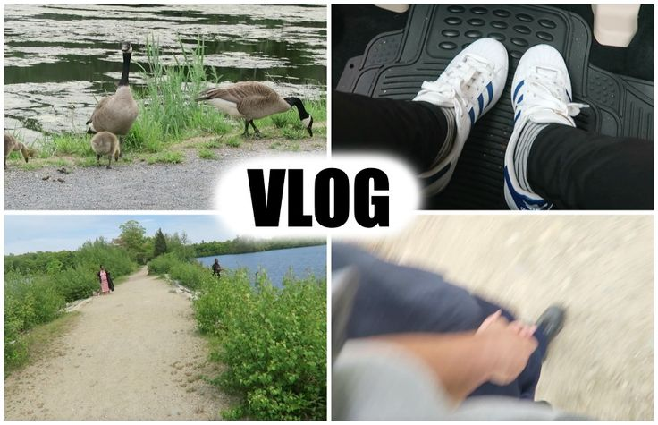 lifestyle: WALKING, DUCKS, RIDE IN GLOOMY DAY, CHINESE FOOD-v...