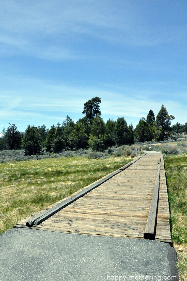 big bear lake single hispanic girls Click here to see our big bear cabin rentals for cheap  and family than our men and women in the  perfect big bear cabin for your trip to big bear lake.
