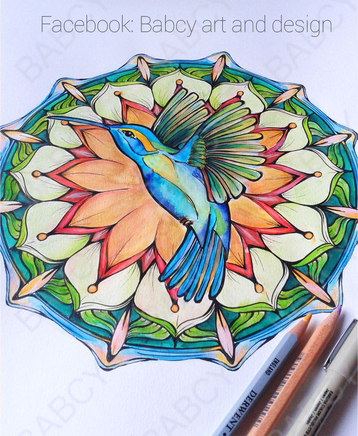 Kolibri mandala made by Babcy art and design. I used watercolor pencil and micron. www.facebook/Babcyartanddesign