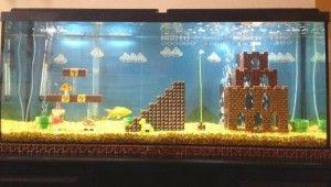 DIY Aquarium Accessories 300x170 Diy Aquarium Decorations