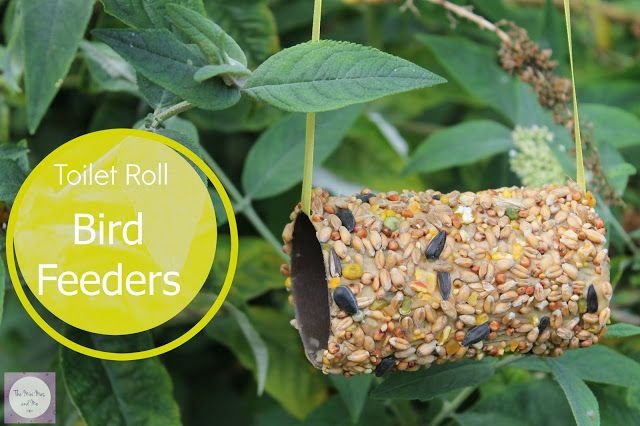 Toilet roll bird feeders - craft for kids #recycling #summer #activity #widlife #nature