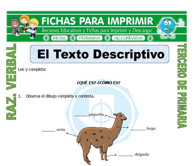 Ficha De El Texto Descriptivo Para Tercero De Primaria Textos Descriptivos Textos Razonamiento Verbal