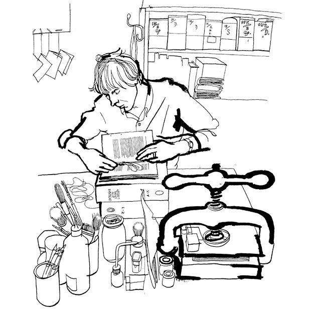 Bookbinding / by Lucinda Rogers: Book Drawings, Drawings Alert