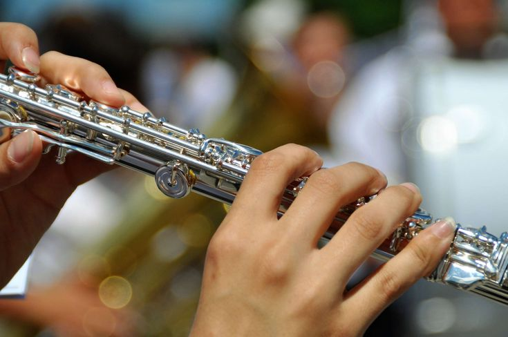 #adult #band #bokeh #brass #classic #close up #concert #flautist #flute #hands #instrument #jazz #music #musical instrument #musician #orchestra #performance #performer #person #play #silver #sound #woodwind instrument