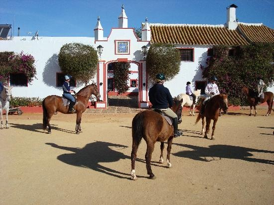 Epona Equestrian Center - stay in a 100s  of years old hacienda where Cervantes once stayed, and explore beautiful southern Spain on well behaved Andalusians
