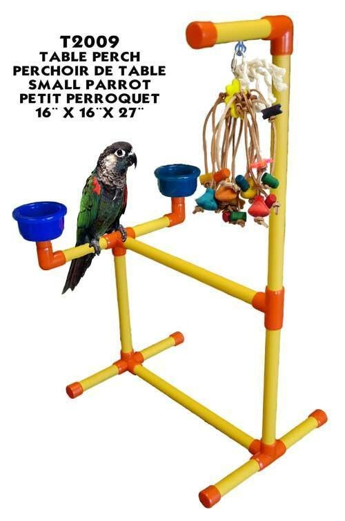 Fun Max Portable Tabletop Stand Small A Table Top Perch For Birds Such As Conures Caiq Snickers Wolfie Our Timneh African Grey