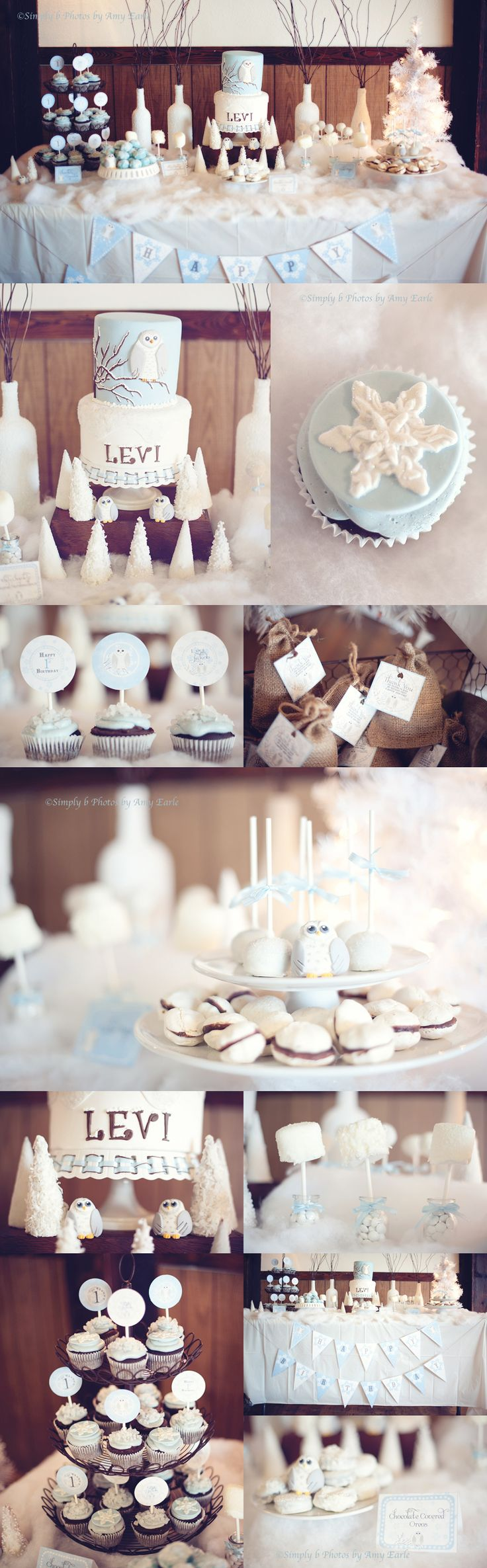 I am speechless!  One of the prettiest set-ups I have ever seen.  Looks like a winter wonderland, and I LOVE the snowy owls!