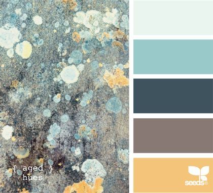 aged hues - Thinking of this color palette for the Home Office. Top or 2nd color would be the walls.