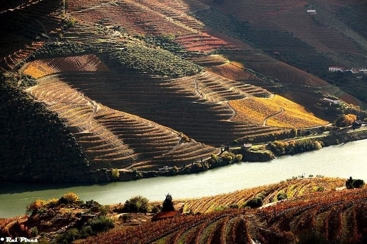 Douro River (Porto Wine)