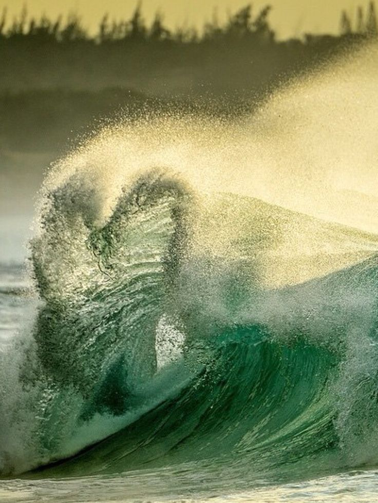From national geographic ♥ wave