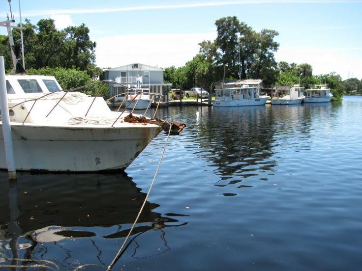 Top 119 ideas about tarpon springs florida on pinterest for Tarpon springs fishing