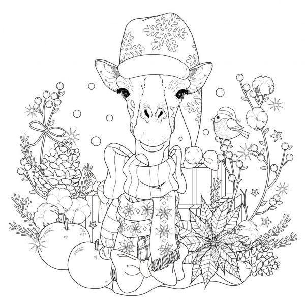 Pagina De Colorir Girafa De Natal Ilustracao De Stock Giraffe Coloring Pages Christmas Coloring Pages Coloring Pages