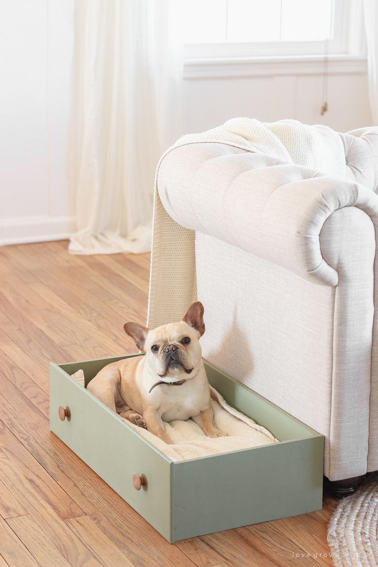 DIY-Schubladen-Hundebett schubladen hundebett
