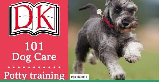 Tips For Dog Obedience Training Tipsforyourdogtraining Dog