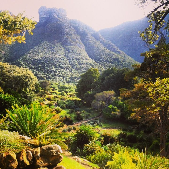Kirstenbosch Botanical Gardens in iKapa, Western Cape