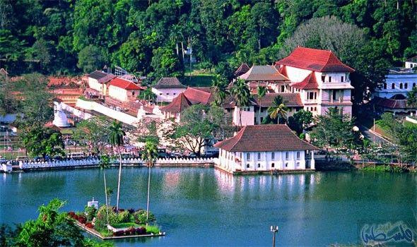 تعرفي على أفضل الأماكن لقضاء شهر العسل في سيرلانكا Cool Places To Visit Holiday Tours Hills Resort