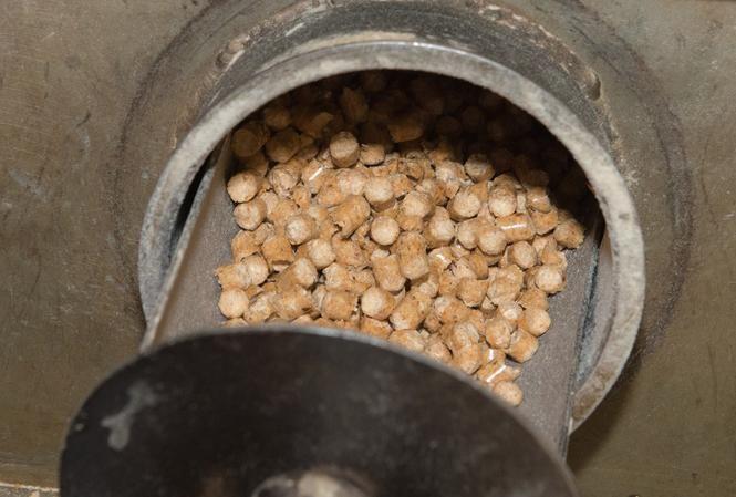 Produkcja pelletu