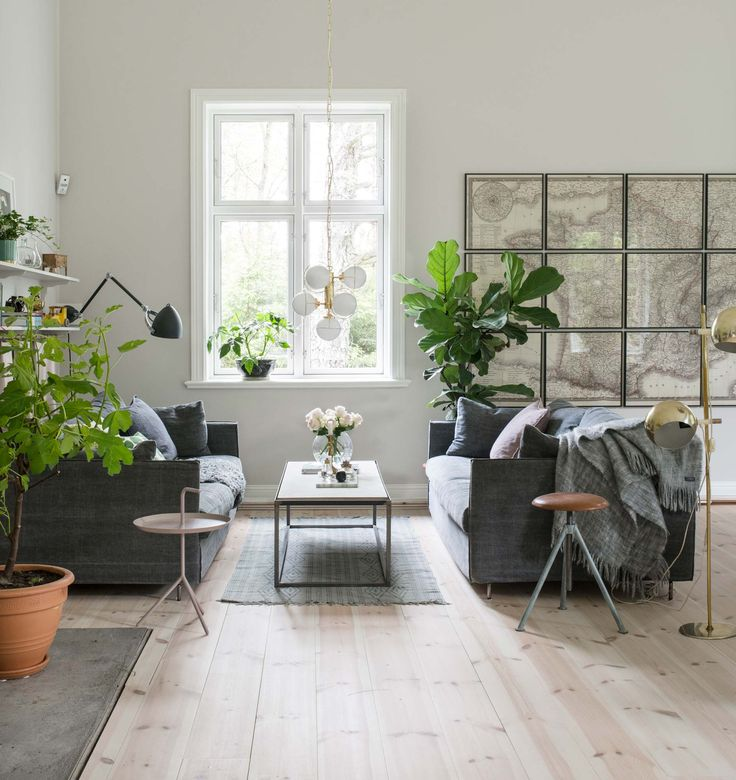 Living room with plants and a vintage looking map of France in a 19th-century former mission house