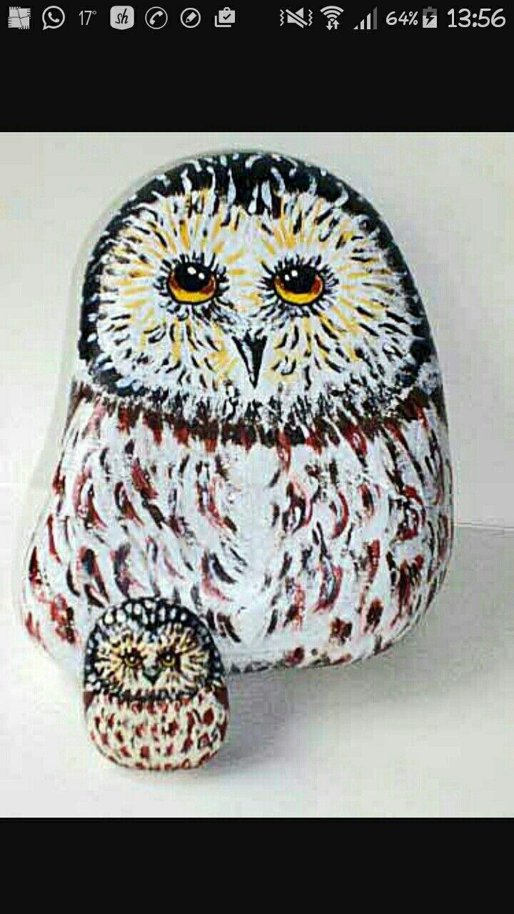 Owl greeting card set welsh artist jen delyth celtic art studio - Cute Animalsfluffy Animalsbaby Animalsowl Animalanimal Picsfunny Animalanimal Photographynature Photographysleeping Animals