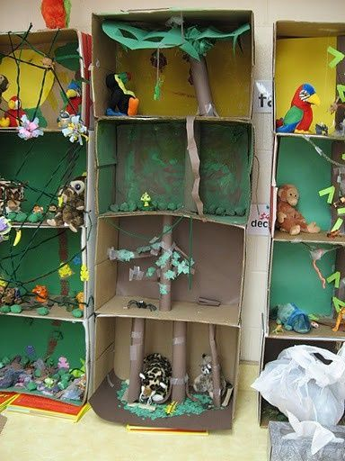 Shoebox Animal Habitats
