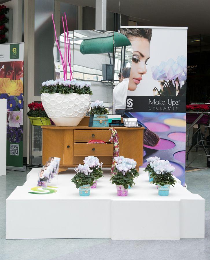 beauty salon with cyclamen