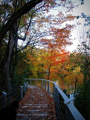 Promenade le long des gorges de la rivière Magog, Sherbrooke, Qc