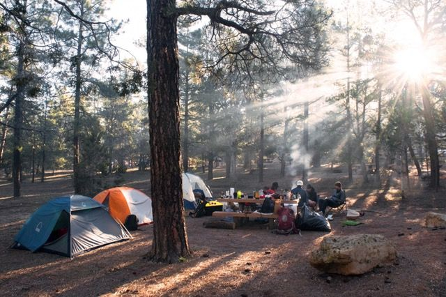 Proper Food Safety When Camping | Equip And Camp