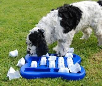 """Jeu interactif """"DOG FINDER"""" Nina Ottosson - Jouet ludo-educatif pour chien - Zoomalia"""