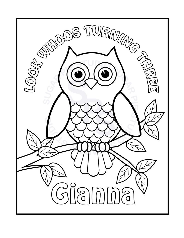 Personalized PrintableOwl Birthday Party Favor Childrens Kids Coloring Page Book Activity PDF Or JPEG File