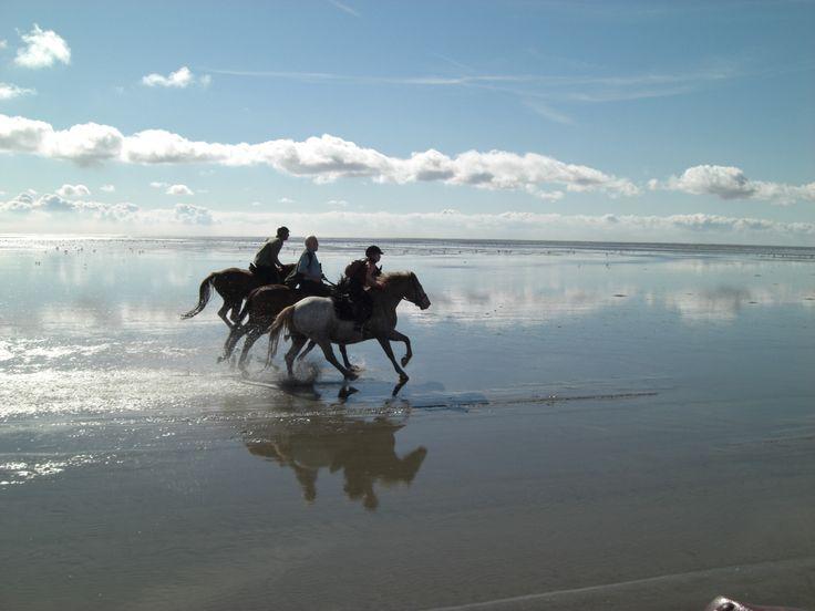Insel Neuwerk; Reiter im Watt -- Nationalpark Wattenmeer – UNESCO-Welterbe