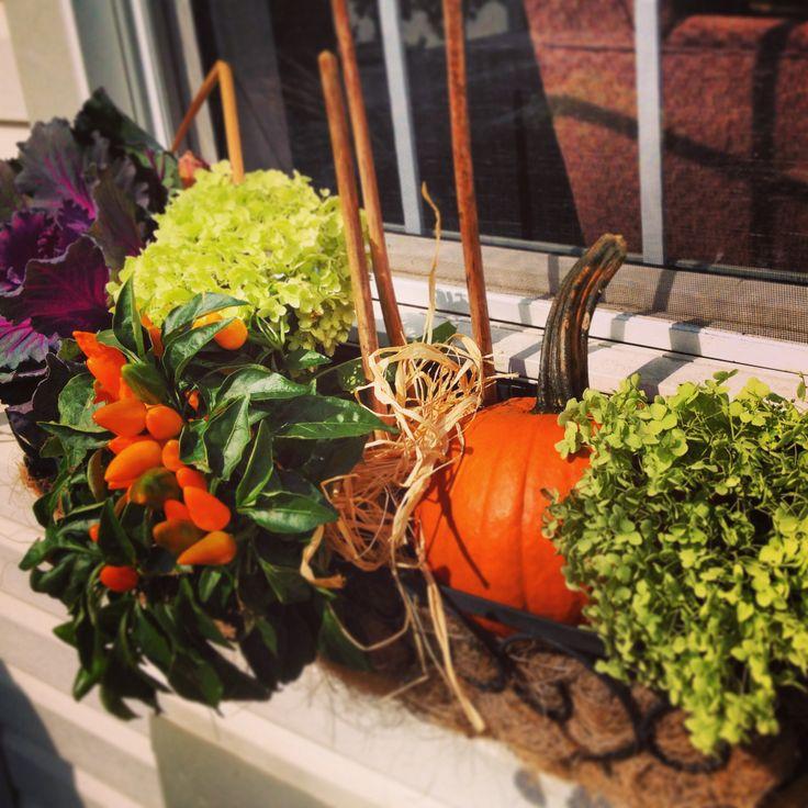 Fall window basket