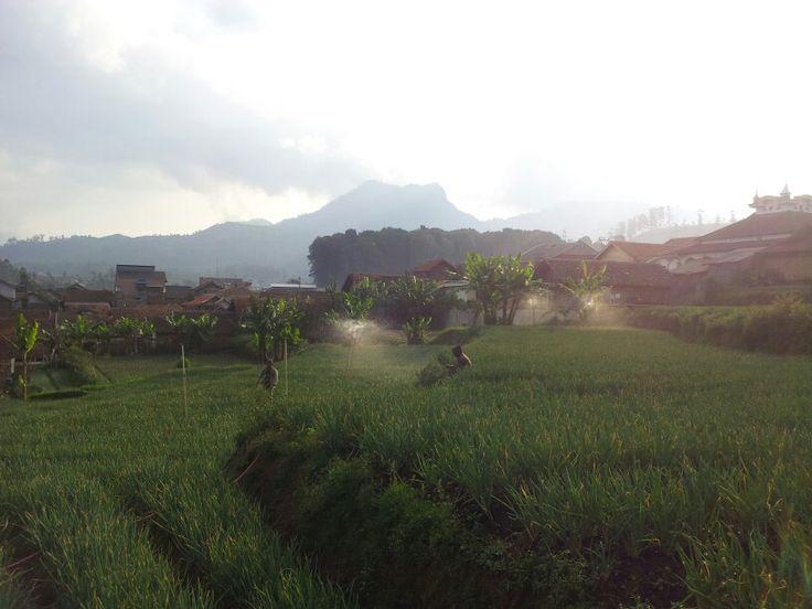 Kertasari Kab Bandung