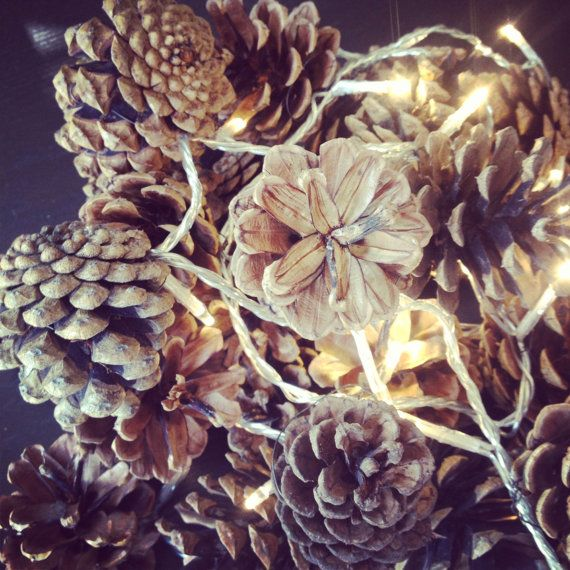 Fir cone fairy lights. Indoor and outdoor use. Christmas chic rustic style by Ruperts House on Etsy, $56.68 CAD