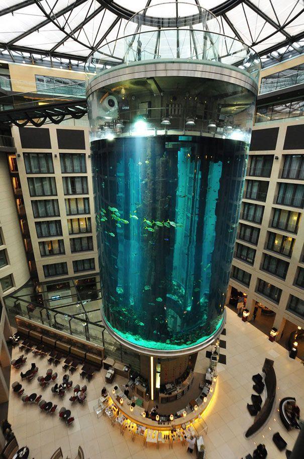 World S Largest Cylindrical Aquarium At Radisson Blu Hotel Berlin Berlin Fish Tank Radisson