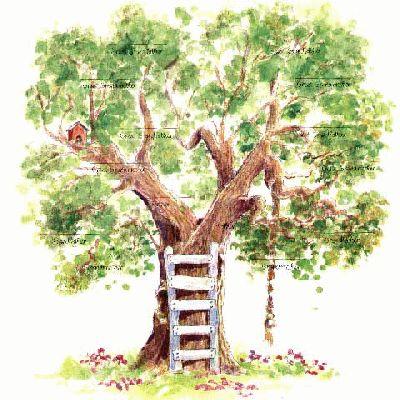 stamboom maken - Google zoeken