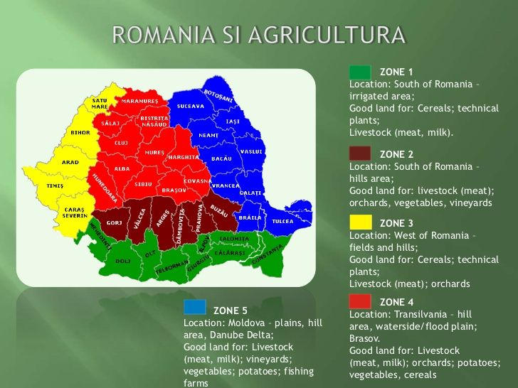 Image result for agricultura romania https://www.youtube.com/watch?v=62X7EcUuQMM