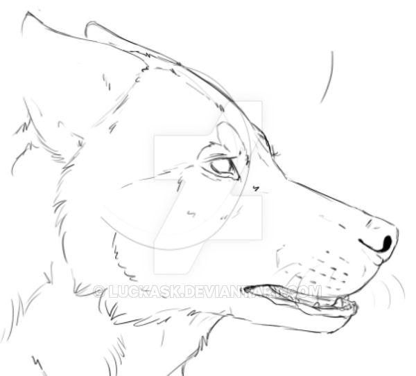 Kasumi sketch