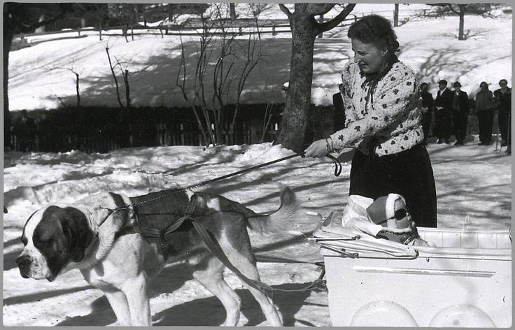 1939 Prinses Juliana lijnt de hond aan