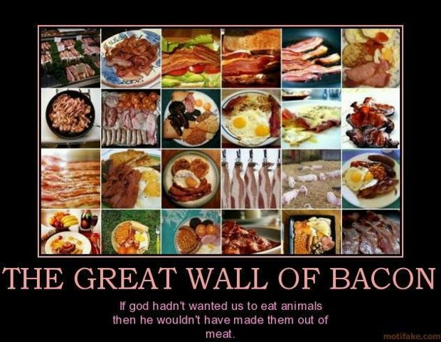 Enough said!: The Great Wall, Funny Funny, Funny Stuffff, Bacon Bacon, Baconfest Kc, Glorious Bacon, Hail Bacon, Funny Harness, Mmmmmmmmmmmmm Bacon