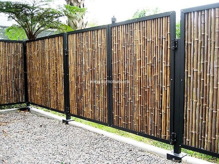 Bamboos are best material to build garden fence. This nice and bold garden fence built with bamboos is bold and secure. The iron frame in which bamboos are fixed make it far more durable and strong. It seems more neat and organized.