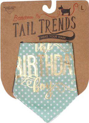 Tail Trends The Birthday Boy Dog Bandana, Medium - Chewy.com