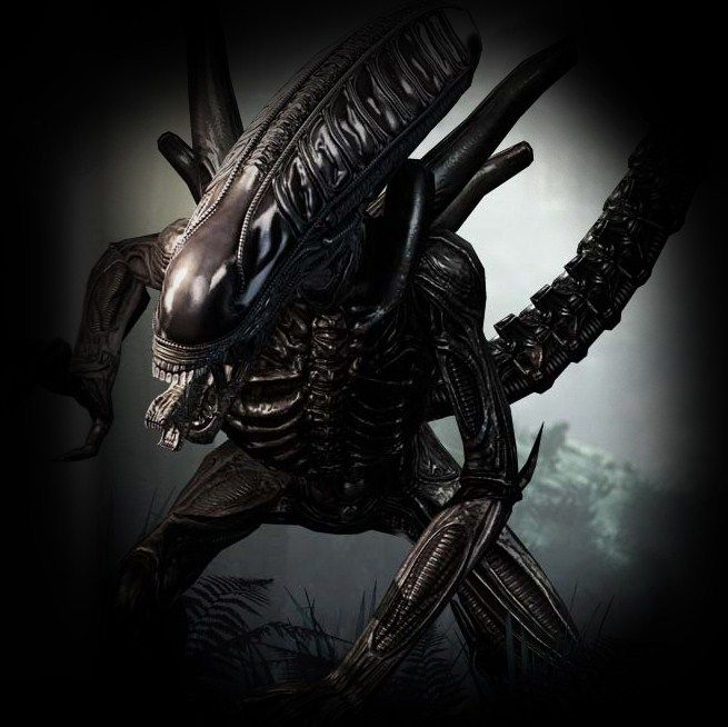 Too late   Filme aliens, Alien vs predador, Predador