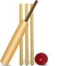 Cricket Bat & Ball