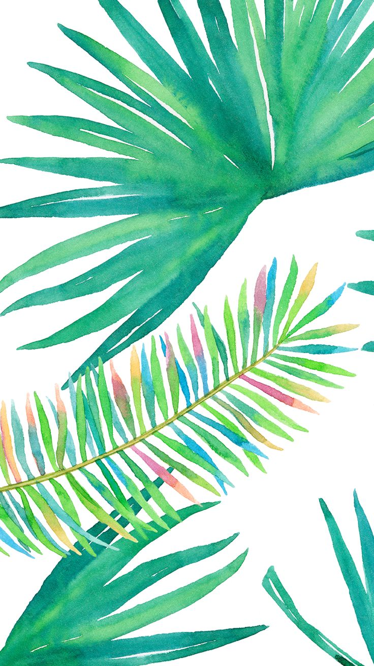 131 best mobile wallpapers images on pinterest backgrounds tropical palm plant vibes iphone wallpaper or background watercolor green voltagebd Images